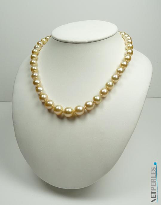 Collier très haut de gamme, grand luxe, perles dorées des mers du sud, diametre moyen 11,5 mm qualité AA+/AAA