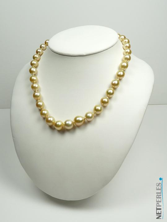 Collier de perles dorées, perles des mers du sud, perles d'australie