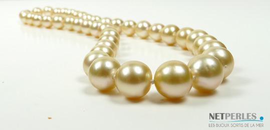 Collier de perles dorées des mers du sud, d'australie