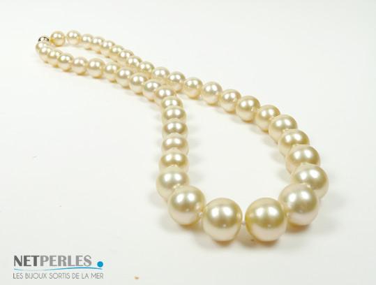 Perles dorees des mers du sud