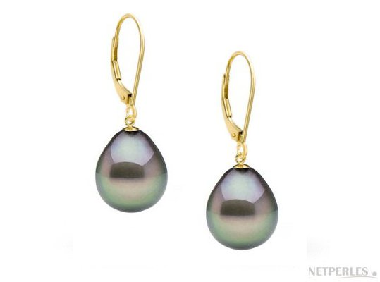Boucles d'oreilles de perles de Tahiti Goutte AAA avec dormeuses en or 18k