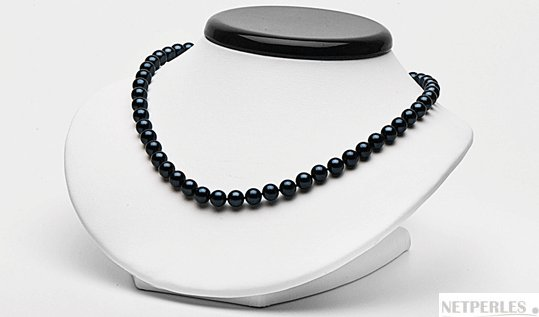 Collier 45 cm de perles de culture Akoya noires