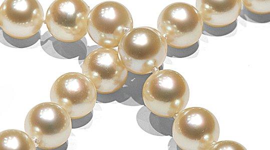 Perles d'akoya de couleur naturelle champagne