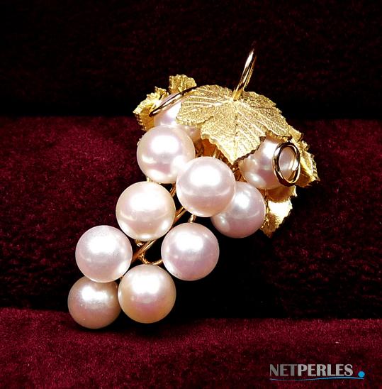 Dans l'écrin le bijou se sent bien, grappe en or massif avec perles de culture d'akoya