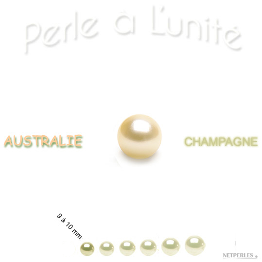 Perle d'Australie Champagne de 9 à 10 mm qualité AA+ ou AAA