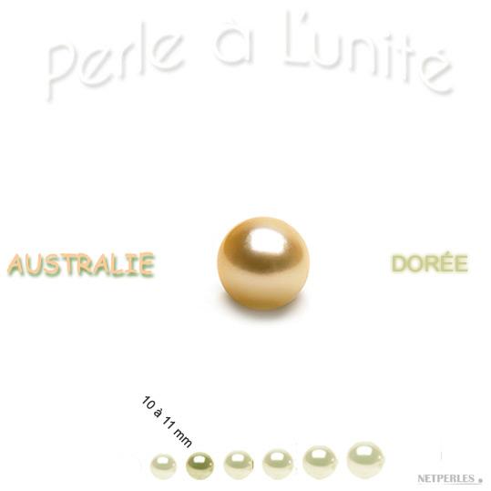 Perle de culture d'Australie Doree de 10 à 11 mm qualité AA+ ou AAA