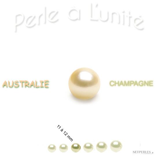 Perle de culture d'Australie Champagne de 11 à 12 mm vendue à l'unité qualité AA+ ou AAA