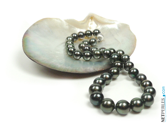 Perles noires, perles de tahiti, perles de polynesie, perles du pacifique