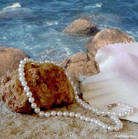 Les perles d'akoya ont ce privilège d'attraper et de redonner toutes