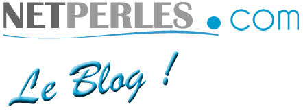 NETPERLES, Le blog