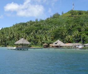 Allevamento perle Tahiti