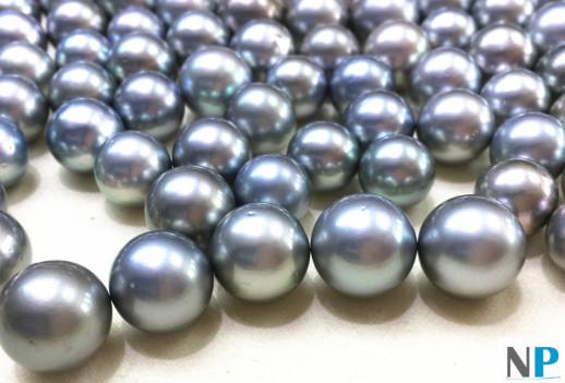 Perles de Tahiti de couleur Gris Argenté avec légères particularité de surface de qualité AA très beau lustre
