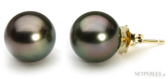 Paire de boucles d'Oreilles de perles de culture de Tahitiqualité AAA