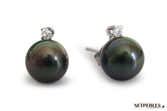Boucles d'oreilles Perles de Tahiti et diamants en or gris