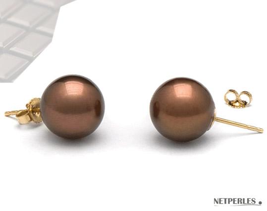 Boucles d'Oreilles de perles de culture de Tahiti couleur Chocolat gros diamètre