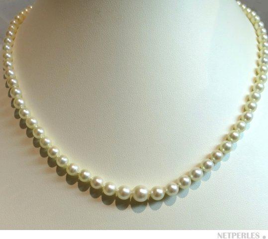 Collier en chute de perles d'eau douce 4 à 8 mm AAA