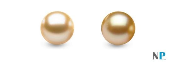 Perles d'Australie CHAMPAGNE, à gauche, et DOREE à droite