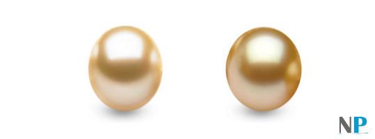 Les couleurs Champagne et Doré des perles des mers du sud
