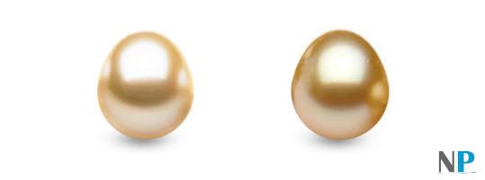 Perles d'Australie Drop de couleur Champagne et Dorées