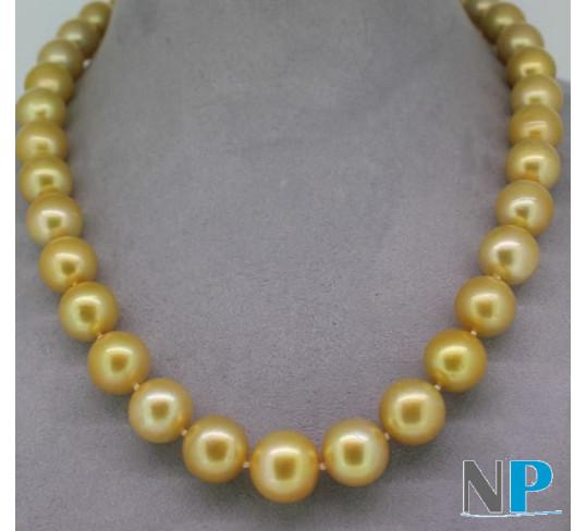 Collier de perles dorees des mers du sud, longueur 44 cm, perles rondes dorées foncées