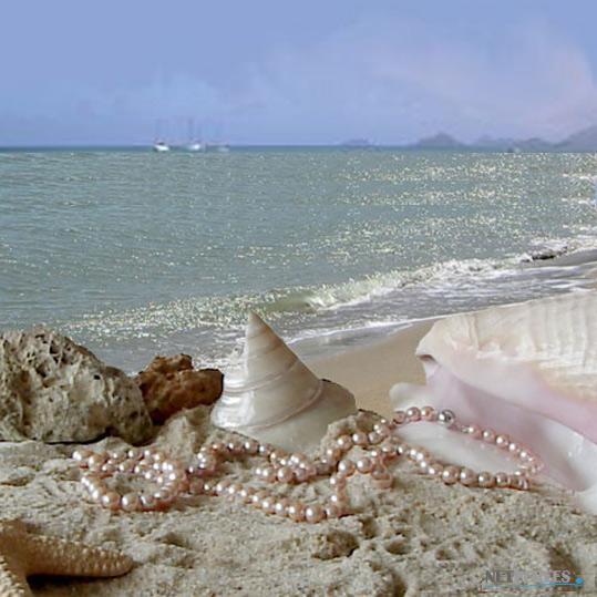 long collier de perles d'eau douce couleur pêche, 114cm diamètre des perles de 9,5 à 10,5 mm