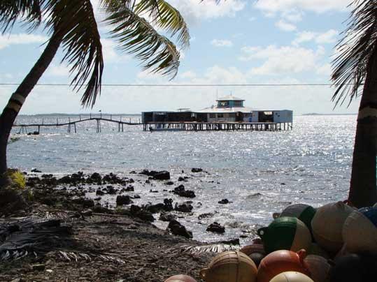 Ferme perlière Tahiti