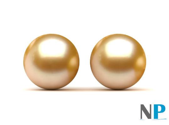 Perles d'Akoya dorées  de qualité AAA semi-percées