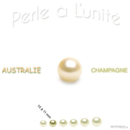 Perle de culture d'Australie champagne de 10 à 11 mm qualité AA+ ou AAA