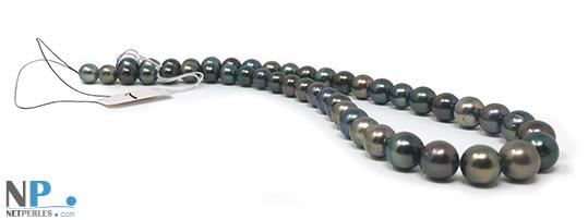 Collier de perles de Tahiti, forme presque rondes, diametre 8 à 11 mm longueur 43 à 44 cm
