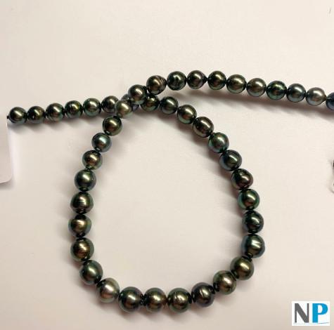 Fili di perle nere di Tahiti da barocche a quasi rotonde con un lustro brillante AA