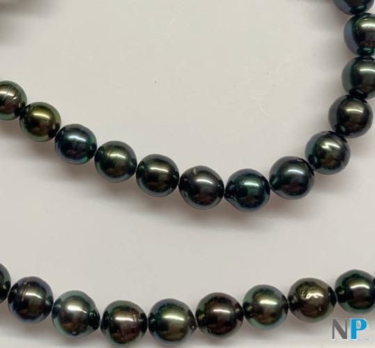 Perles noires de Tahiti, une vraie merveille!