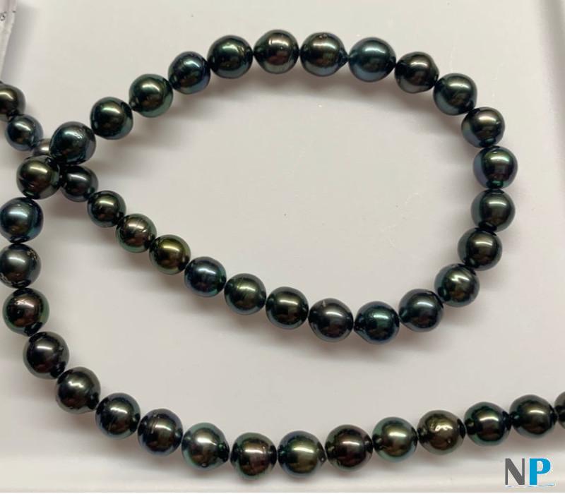 Collier 44 cm de perles de Tahiti rondes ou presque rondes très brillantes