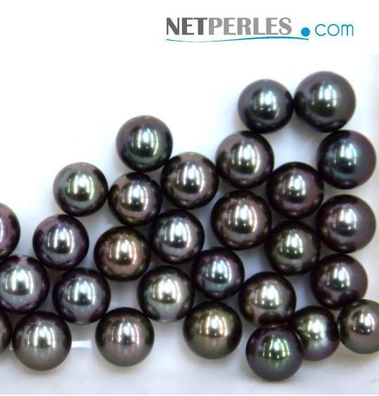 Sublimes Perles noires de Tahiti