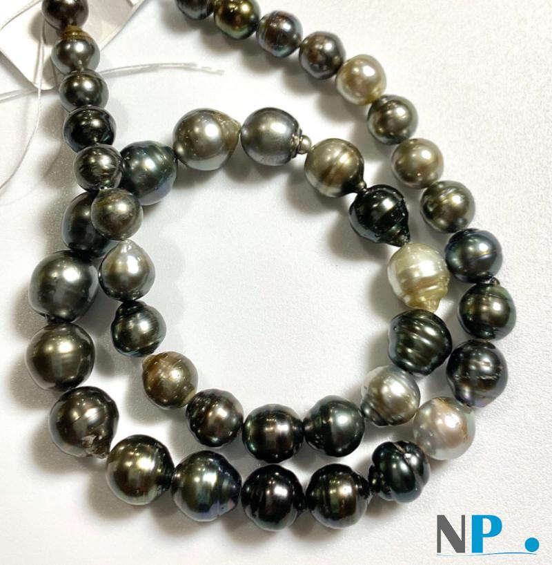 Collier de  perles de Tahiti Baroques multicolores très lumineuses et brillantes