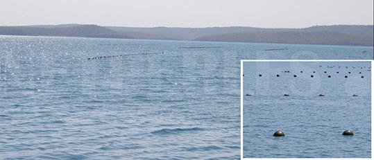 Cosa si può vedere da un allevamento di perle in Australia - vista dal mare - allevamento di perle australiano - perle coltivate più grandi del mondo