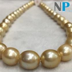 Collier de perles dorées Philippines Baroques 10-12 mm