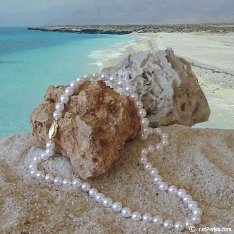 Collier de perles Akoya 6,5 à 7 mm, longueur 45 cm