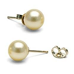 Boucles d'Oreilles de perles d'Akoya champagne 8-8,5 mm AAA Or 14k