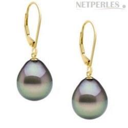 Boucles d'Oreilles Or 18k Perles de Tahiti Goutte AAA